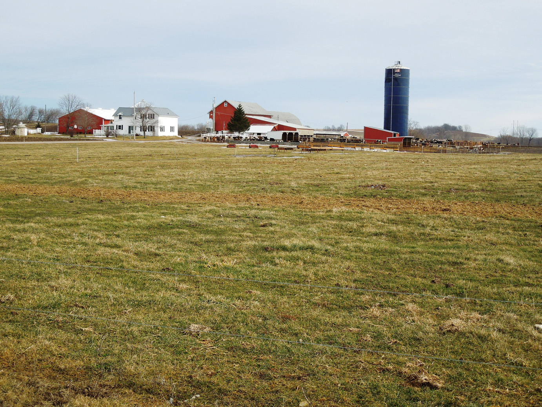 farm-107-Copy-Copy
